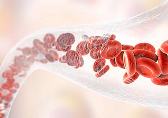 Vēnu un asinsvadu stiprināšana