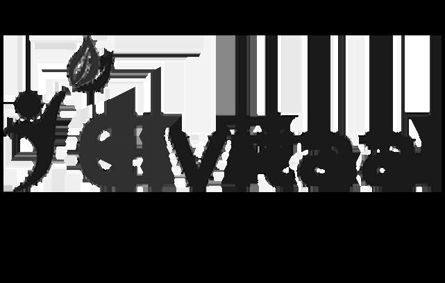 elvitaal logo ManiVitamīni.lv