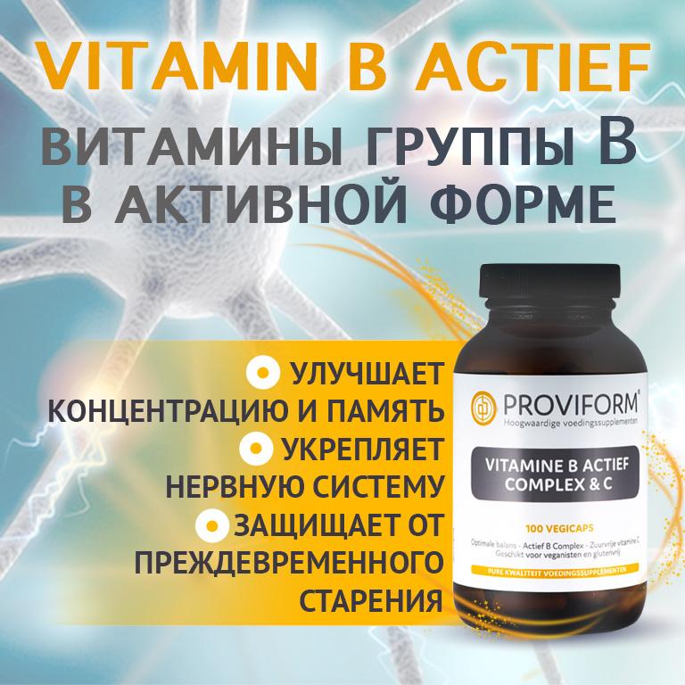 Vitamin B actief provisor витамины высшего качества